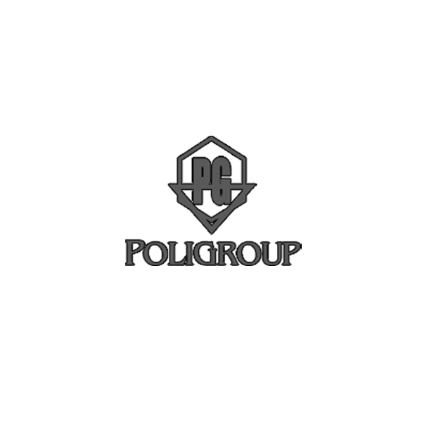 Изработка на сайт и SEO оптимизация за Poligroup