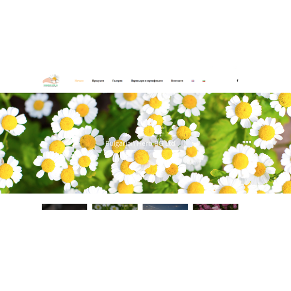 Изработка и оптимизация на Българска билка