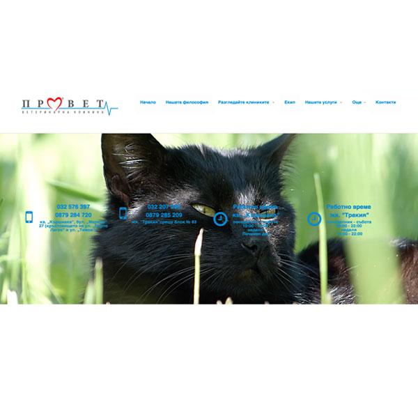 Изработка и оптимизация на сайт за Училище ПГАСГ